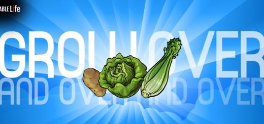 regenerating-vegetables
